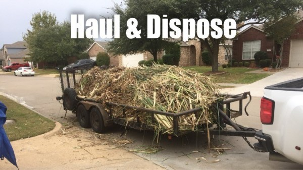 Haul & Dispose